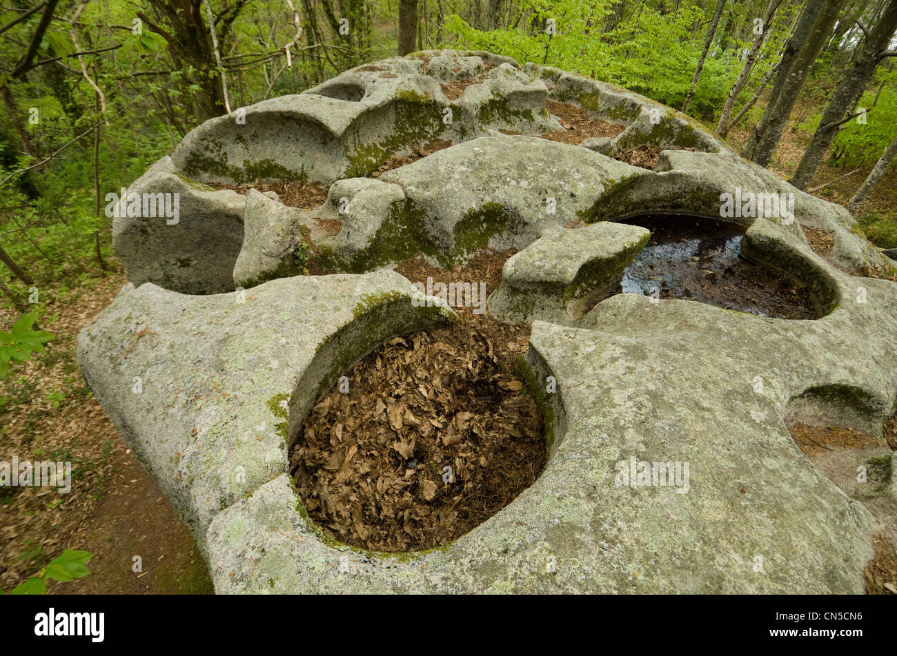 France, Finistere, Nevez, huge dolmen hidden in the heart of the forest - Stock Image