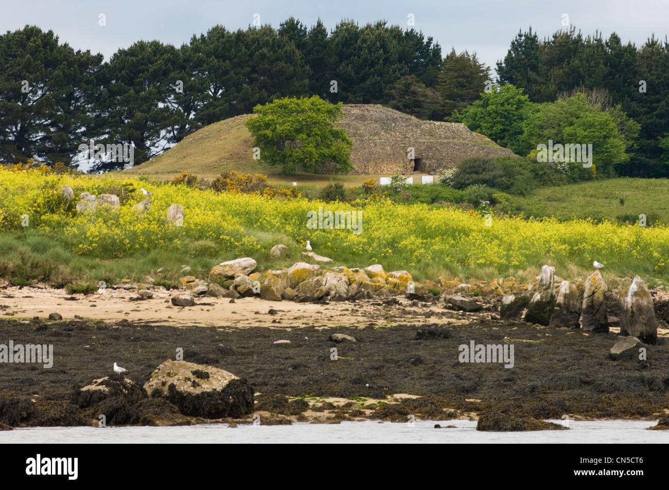 France, Morbihan, Golfe du Morbihan, Larmor Baden, cairn of Gavrinis island, whose slabs carved 50 centuries ago - Stock Image