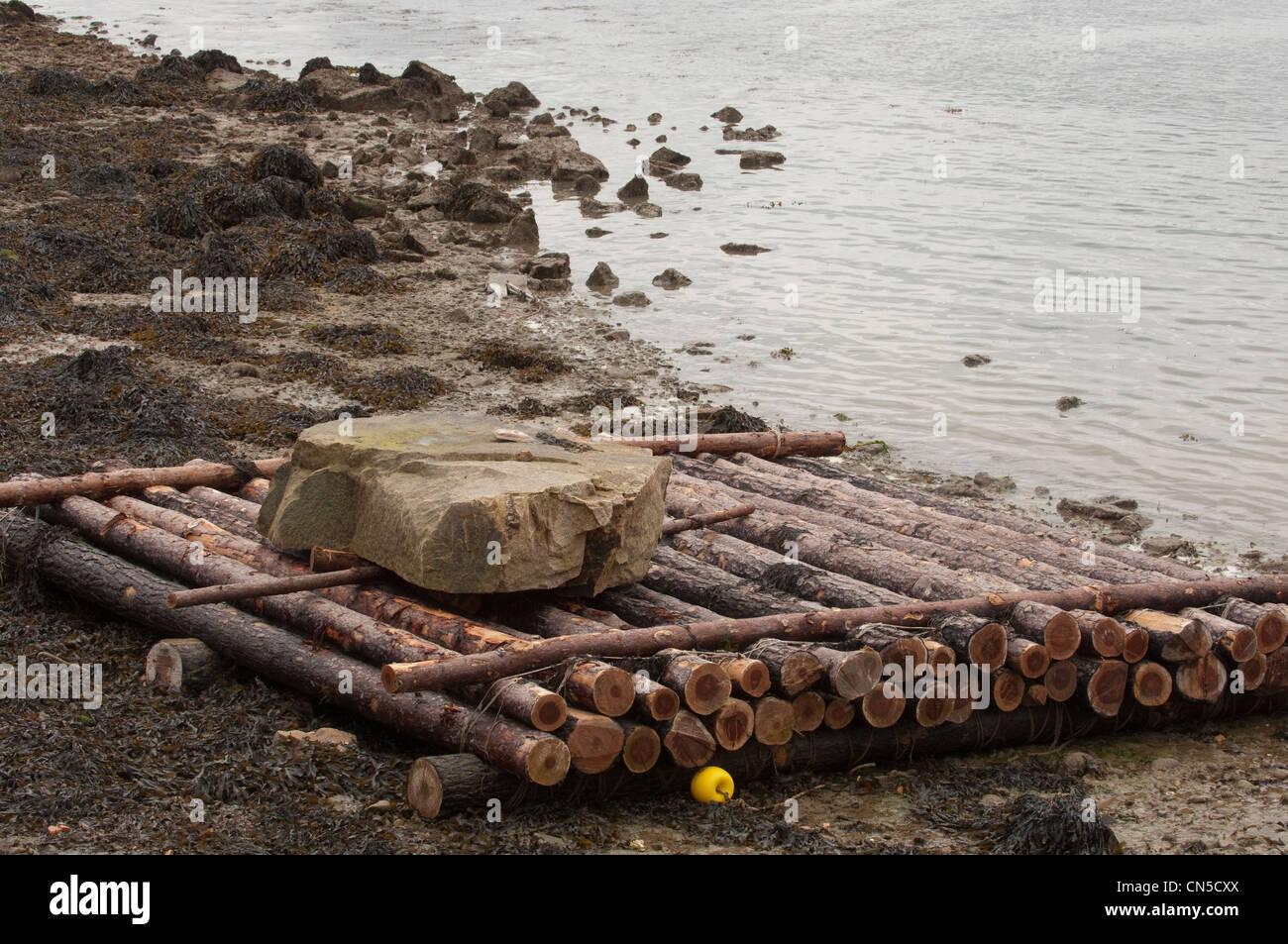 France, Morbihan, Golfe du Morbihan, Larmor Baden, experience of floating raft on Gavrinis island, to understand - Stock Image