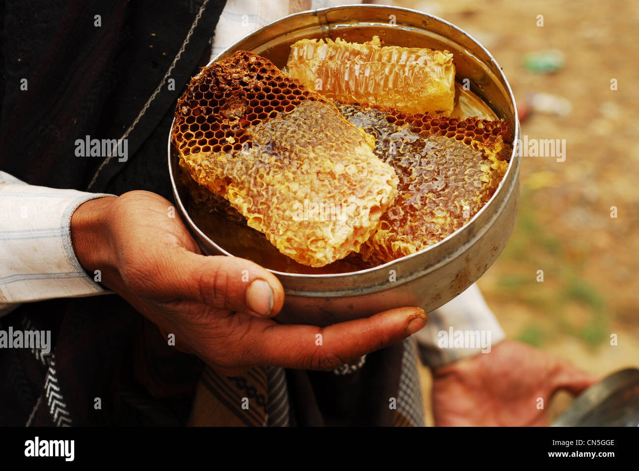 Yemen, Inland, man holding honeycomb inside a container - Stock Image