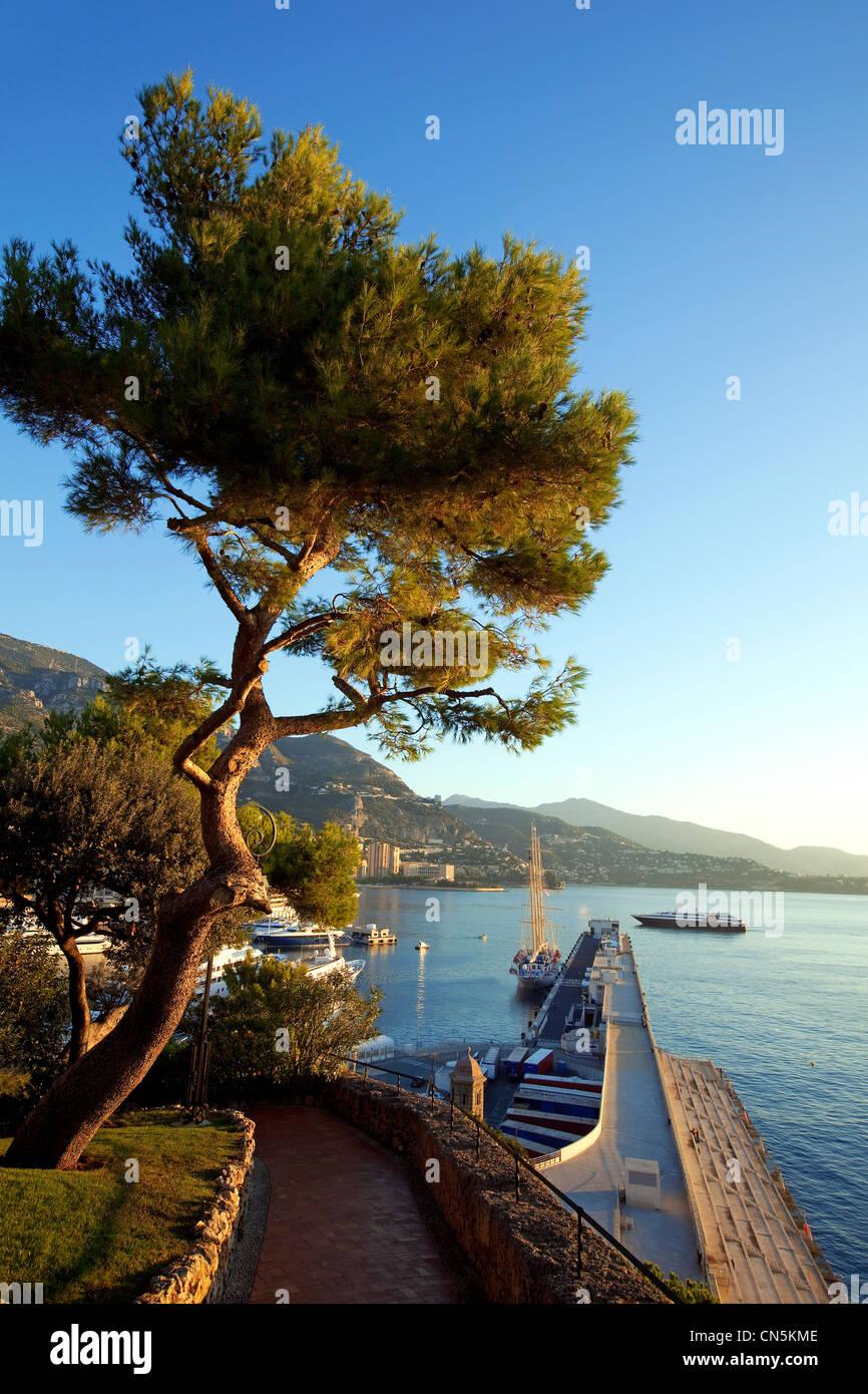 Principality of Monaco, Monaco, fishermen road, dock Reinier III - Stock Image