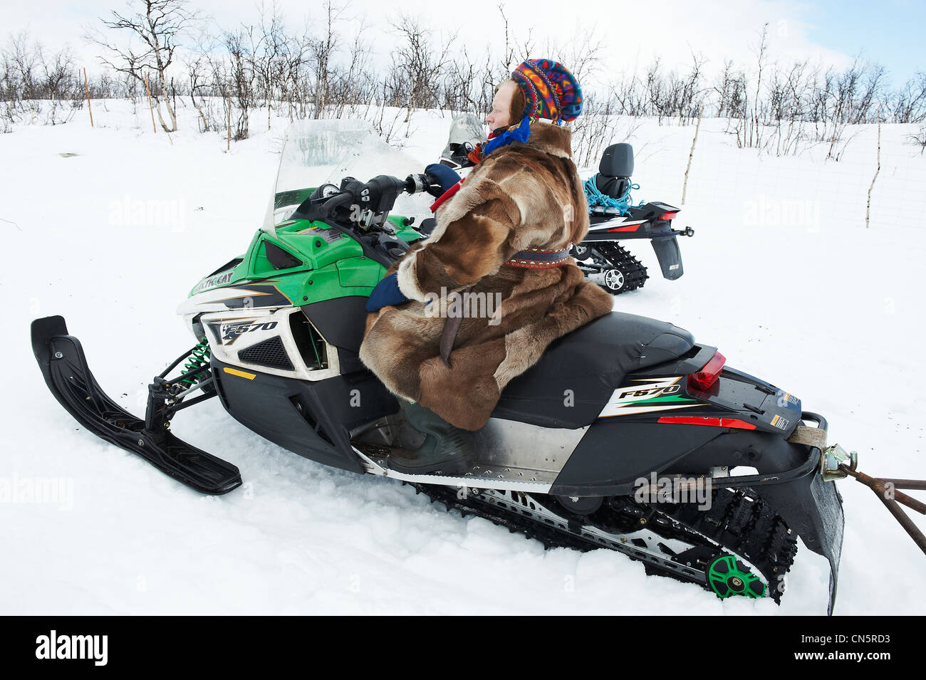 Norway, Lapland, Finnmark County, Karasjok, the great annual reinder migration, the start to the Barrentz sea - Stock Image