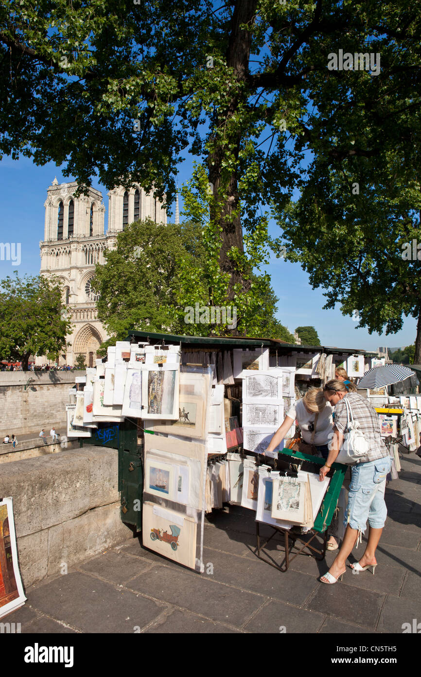 France, Paris, St Michel district, the booksellers quai de Montebello and the Notre Dame cathedral - Stock Image