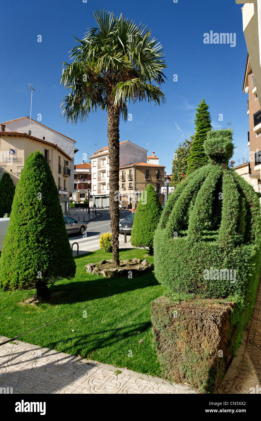 Spain, Extremadura, Losar de la Vera, trimmed trees in the city on the main street has become tourist attraction - Stock Image