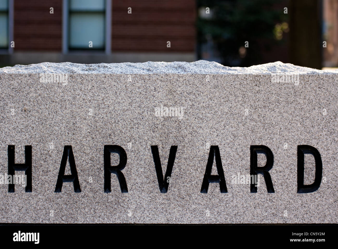 etail of a granite marker in a driveway at Harvard University campus in Cambridge, MA, showing the letters HARVARD - Stock Image