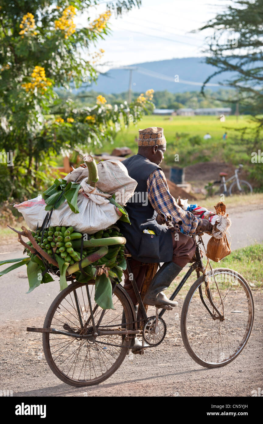 Tanzania, Arusha region, Rift Valley, some of the Manyara National Park, the village of Mto wa Mbu on the road B144 - Stock Image