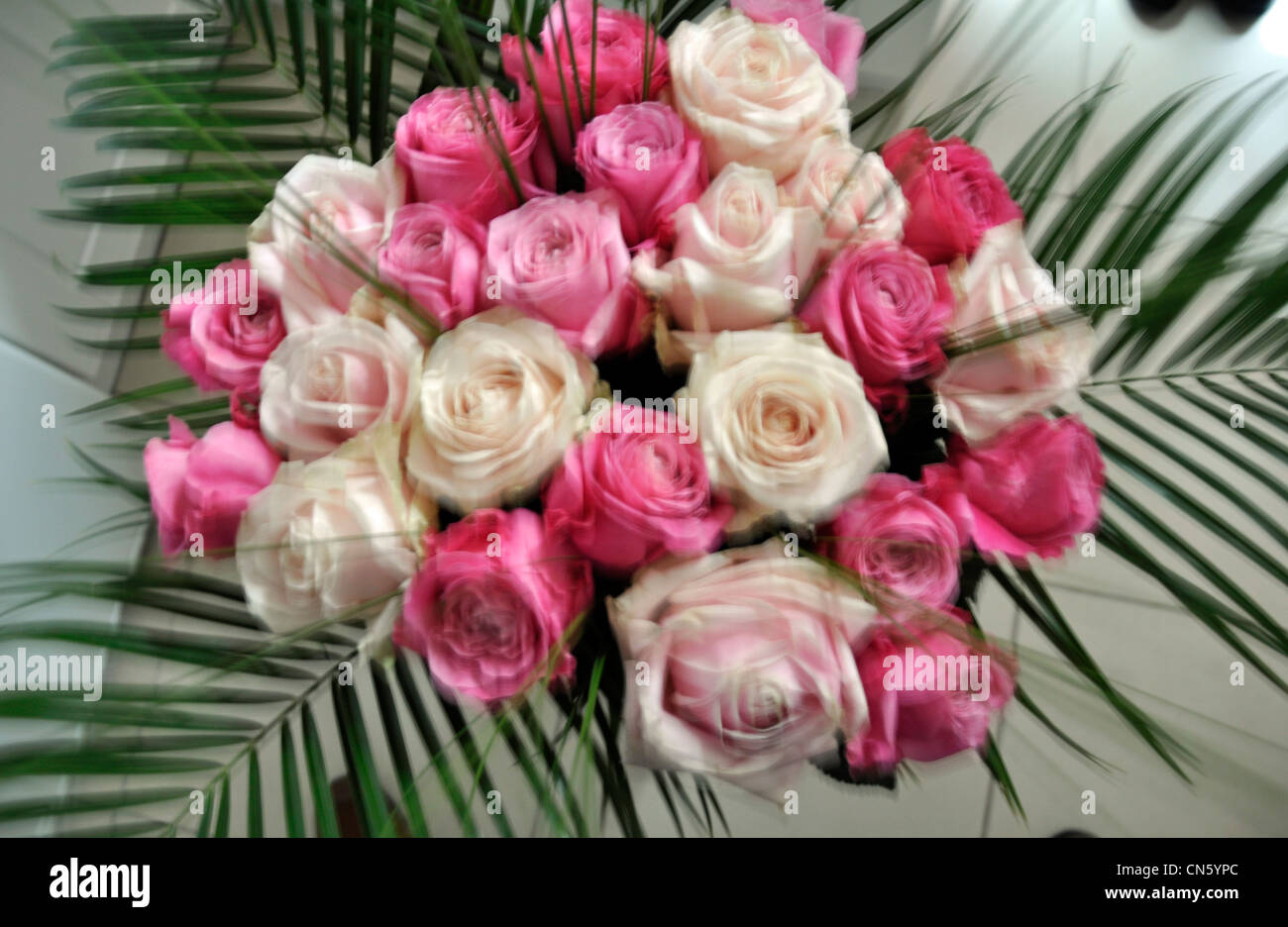 pink cream lilac rose bouquet amp palm leaves stock photo