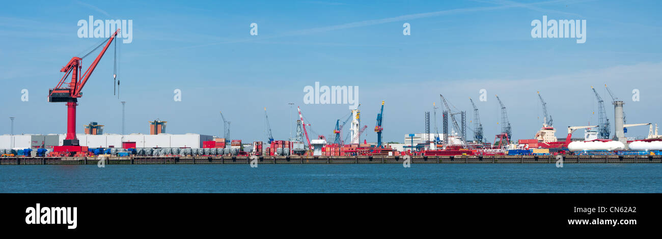 lots of cranes in rotterdam harbor - Stock Image