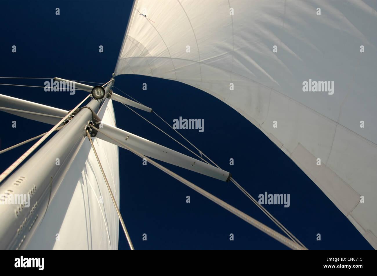 Full sail - Stock Image