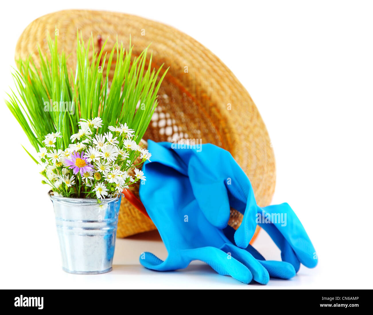 Gardening tools with fresh flowers isolated on white background, organic garden concept Stock Photo