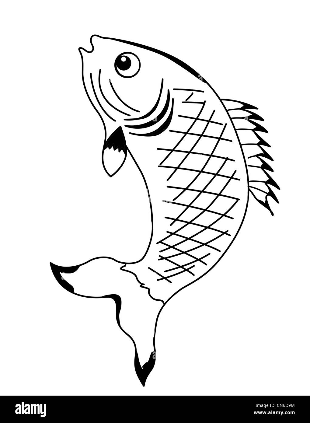 Category Animal Fish, Fish Icons, Animal Icons, Category Icons PNG  Transparent Clipart Image and PSD File for Free Download