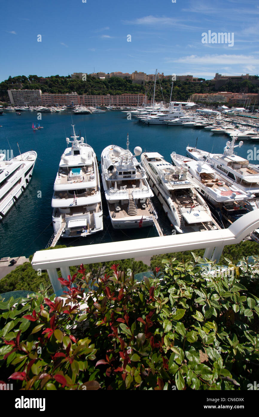 Luxery yachts in the Monte Carlo harbour, Monaco - Stock Image
