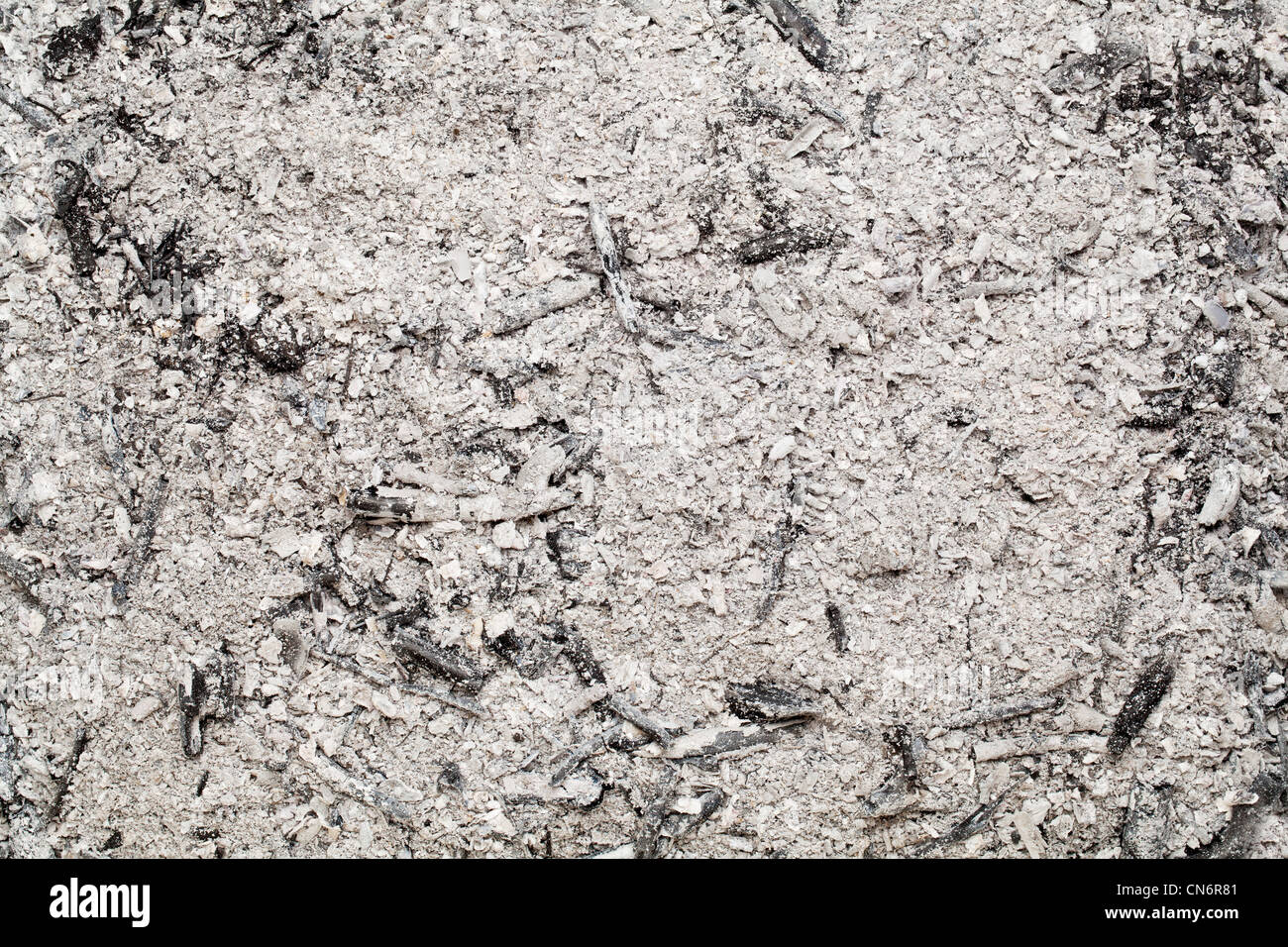 burned wood ash background from home fireplace - Stock Image
