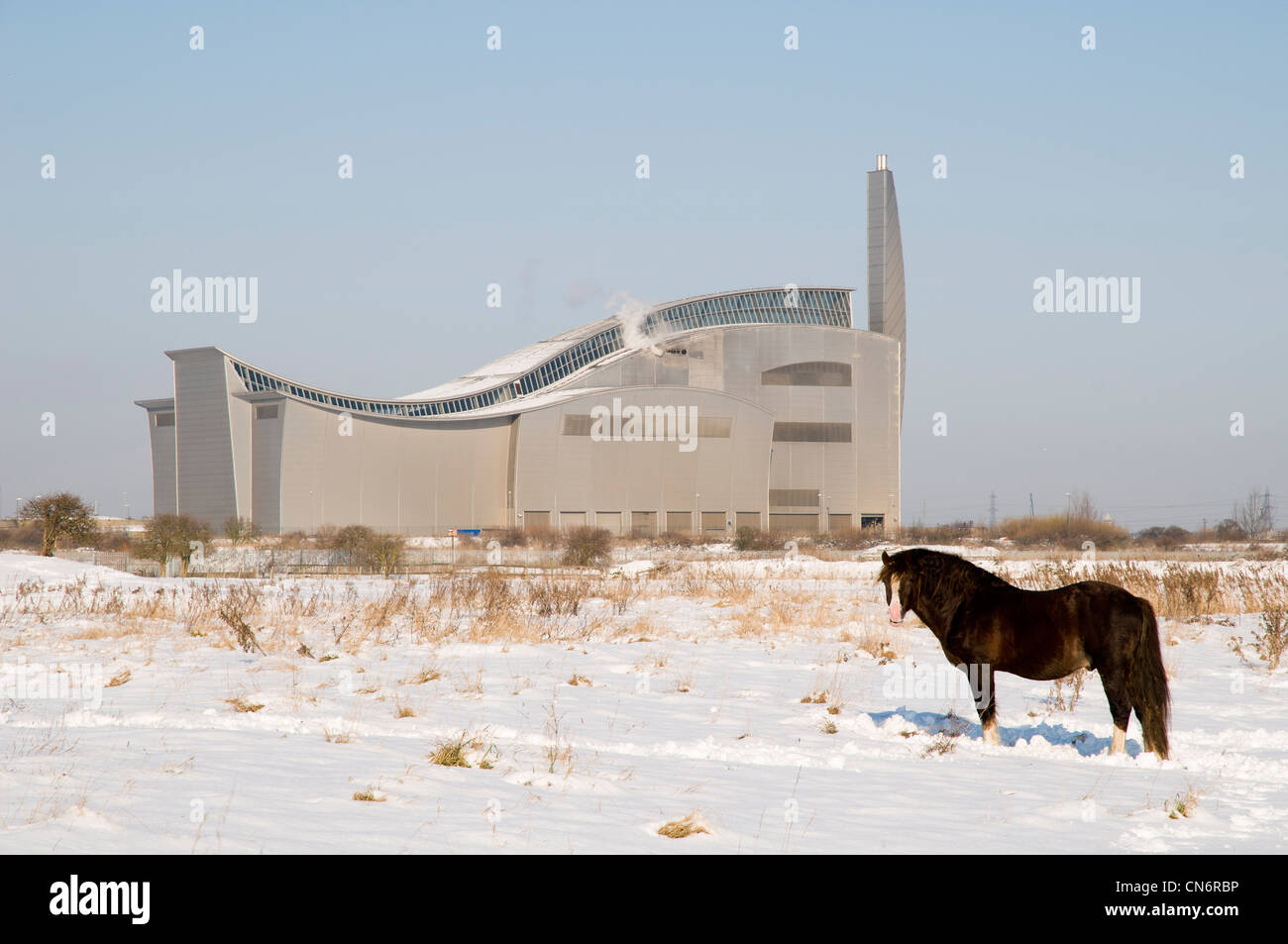 A horse standing in the snow in front of the Thames Water sewage sludge incinerator. Bexley, Kent. February. - Stock Image