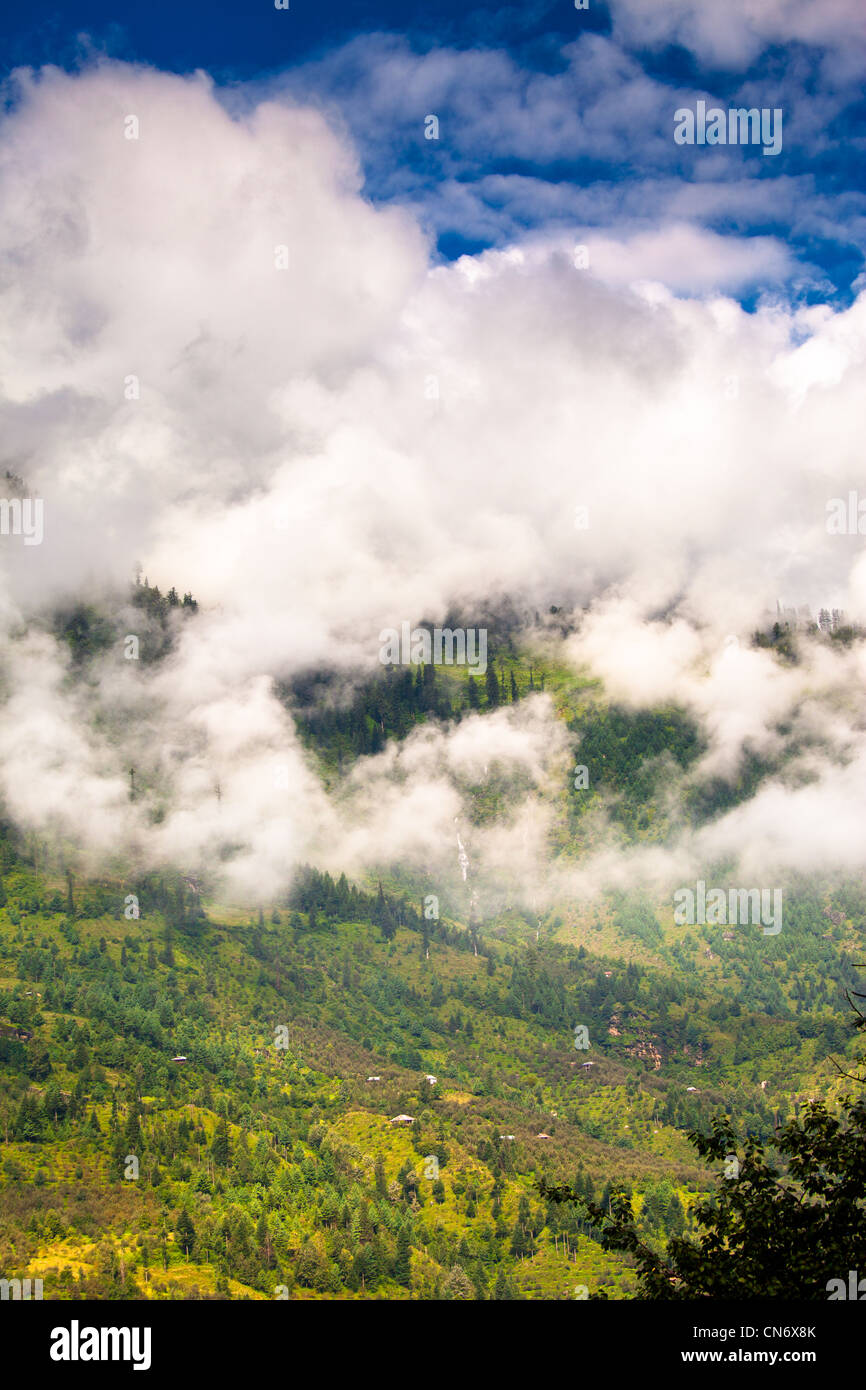 Lush mountain slopes of the Kullu valley besides Manali - Stock Image