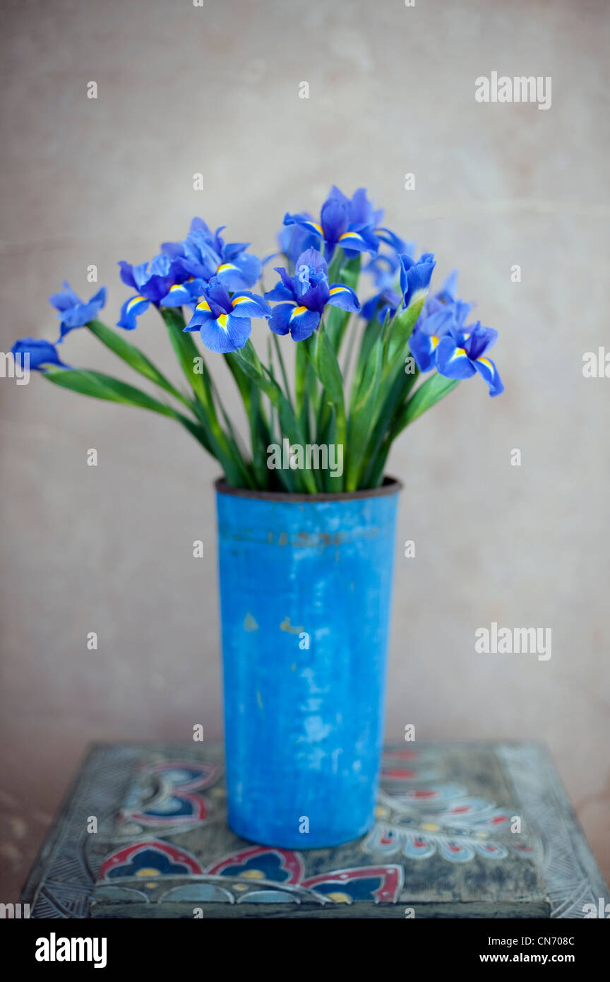 Iris flowers in a  blue painted rusted metal pot. - Stock Image