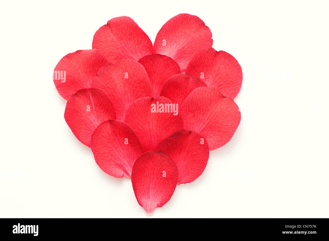 red petals ordered in heart - Stock Image