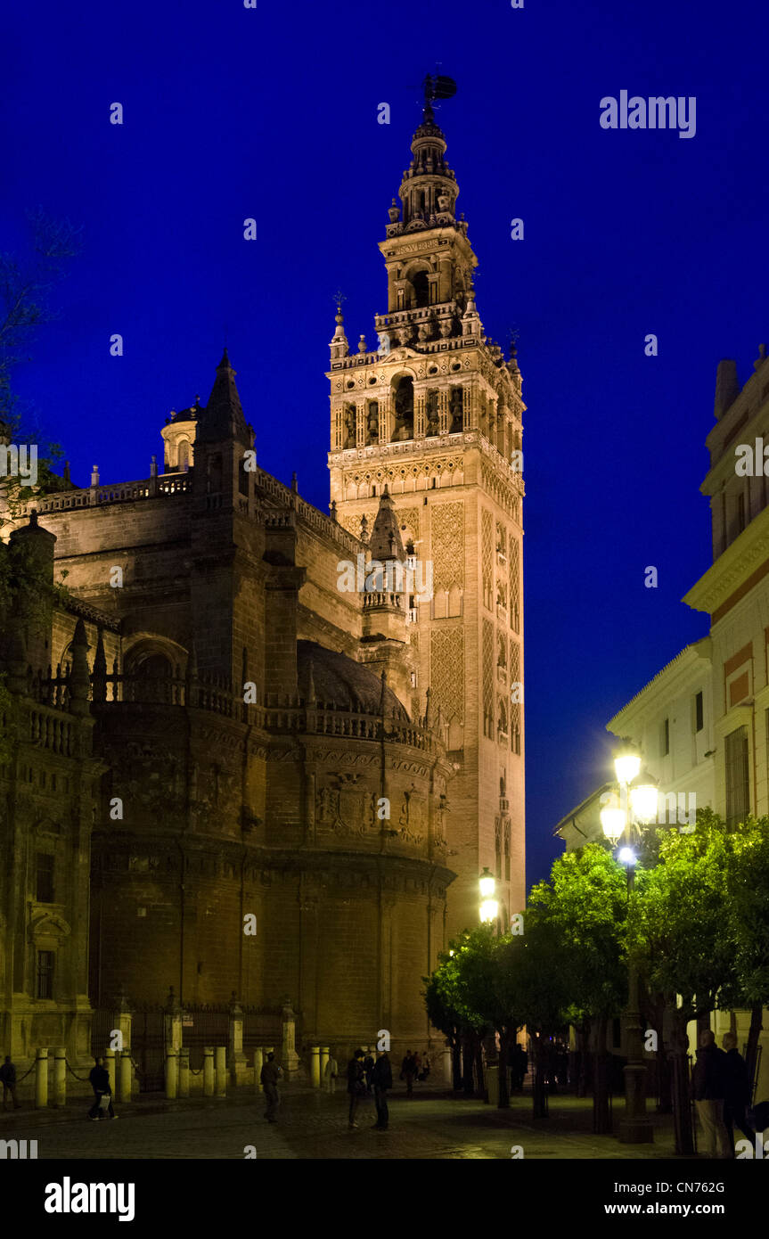 Seville, Spain. La Giralda tower at night, Seville Cathedral, Sevilla, Andalucia, Spain - Stock Image