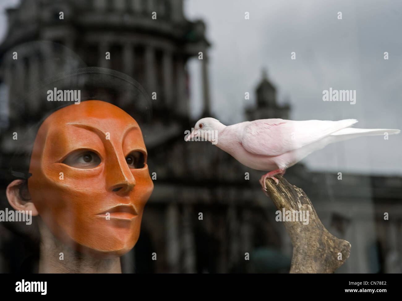 Masked man with colored dove, City Hall, Belfast. - Stock Image