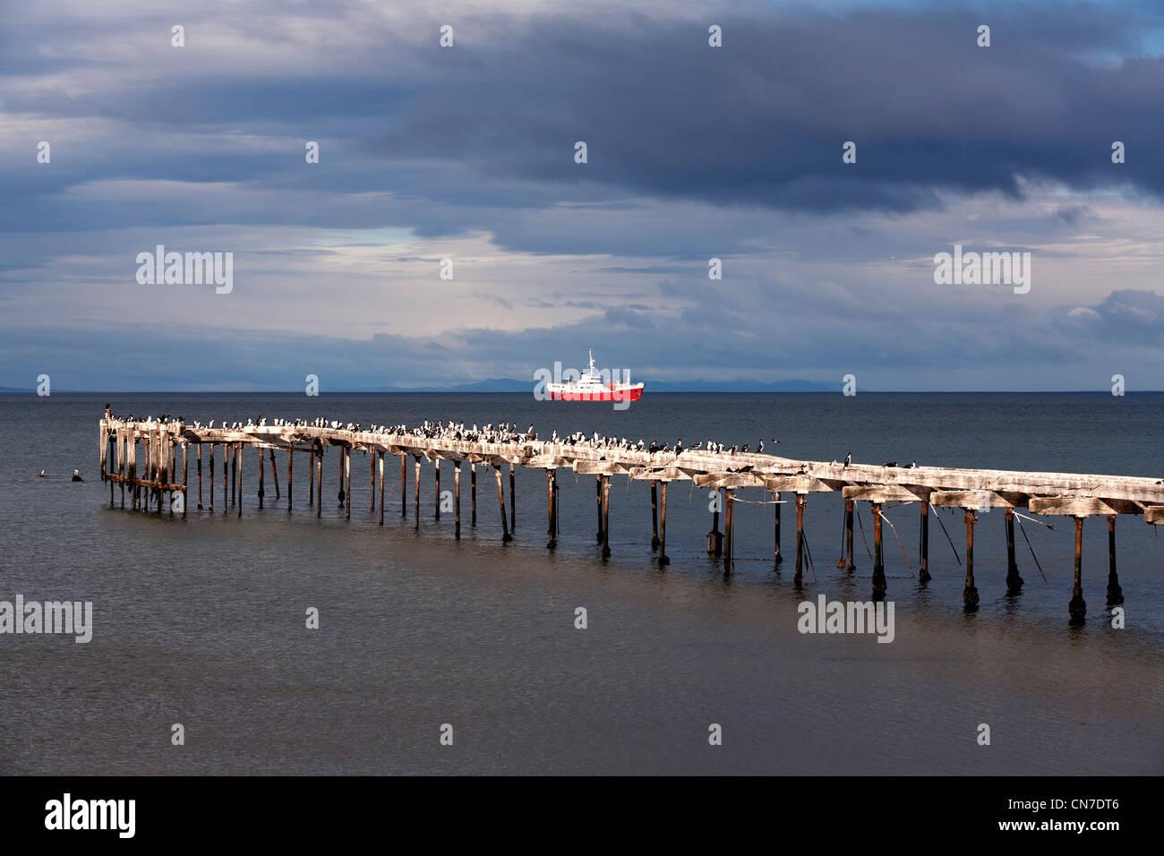Punta Arenas, Magellan strait, Patagonia, Chile, South America - Stock Image