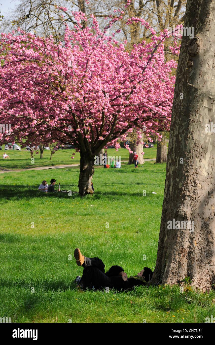 France, Paris, Bois de Boulogne - Stock Image