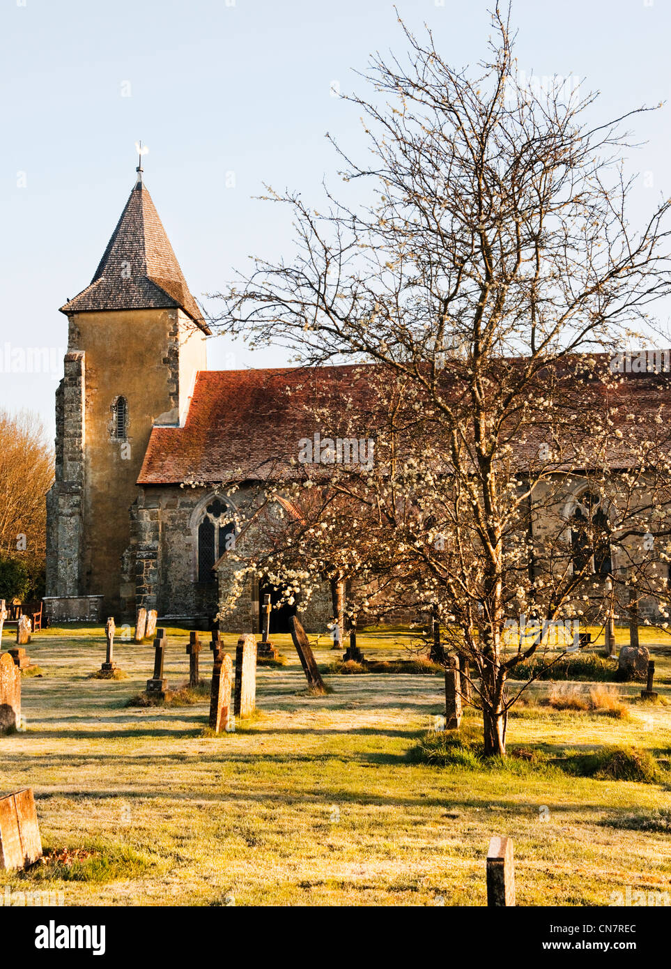 St Georges Church, Trotton, West Sussex in the early morning with early Spring blossom and slight frost on the ground. - Stock Image
