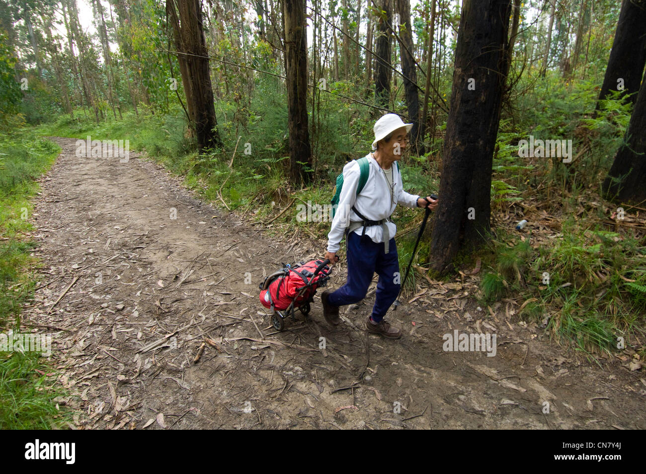 Spain, Galicia, Arzua, Mamodu Oni, japonese pilgrim of 73 years old, with his caddy to carry his belongings and - Stock Image