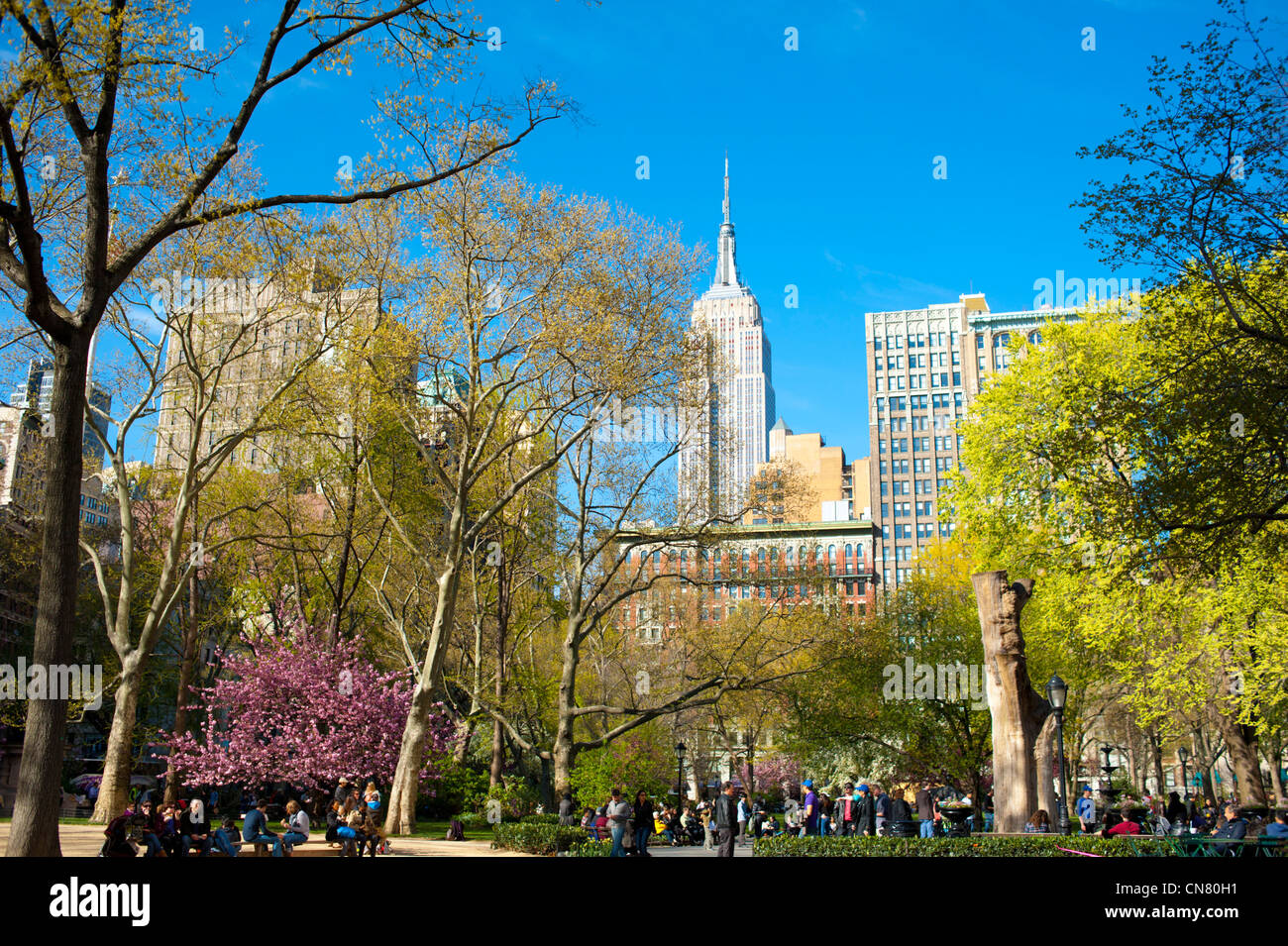 USA  New York City Manhattan NY NYC Parks Madison Square Park view of Empire State Building spring outdoors sunny Stock Photo