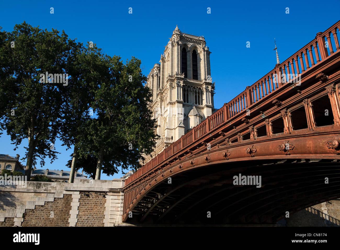 France, Paris, the Seine river banks, listed as World Heritage by UNESCO, the Pont au Double and Notre Dame de Paris - Stock Image