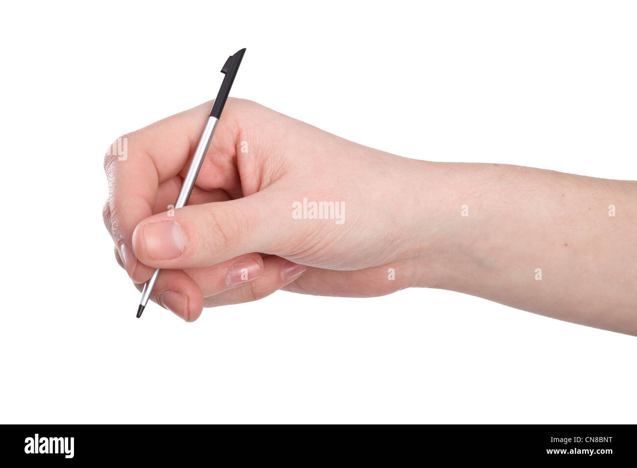 pda stylus in hand isolated on white background - Stock Image