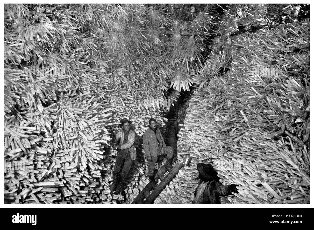 First published 1914 Coalcite Crystal Caves at Naica mine Santa Rosalia Chihuahua - Stock Image