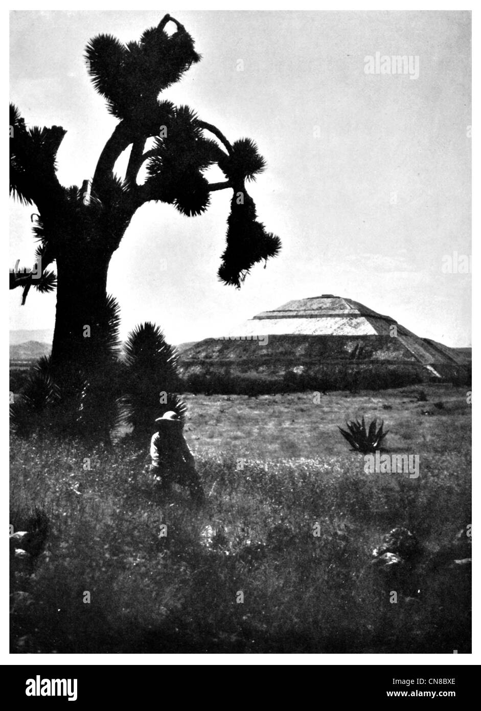 First published 1914 Pyramid of the sun San Juan Teotihuacan Mexico Aztec - Stock Image