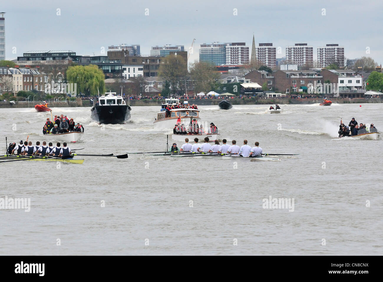 Cox protests the broken oar on the Oxford boat (left )at the restart of Oxford Cambridge race after the swimmer - Stock Image