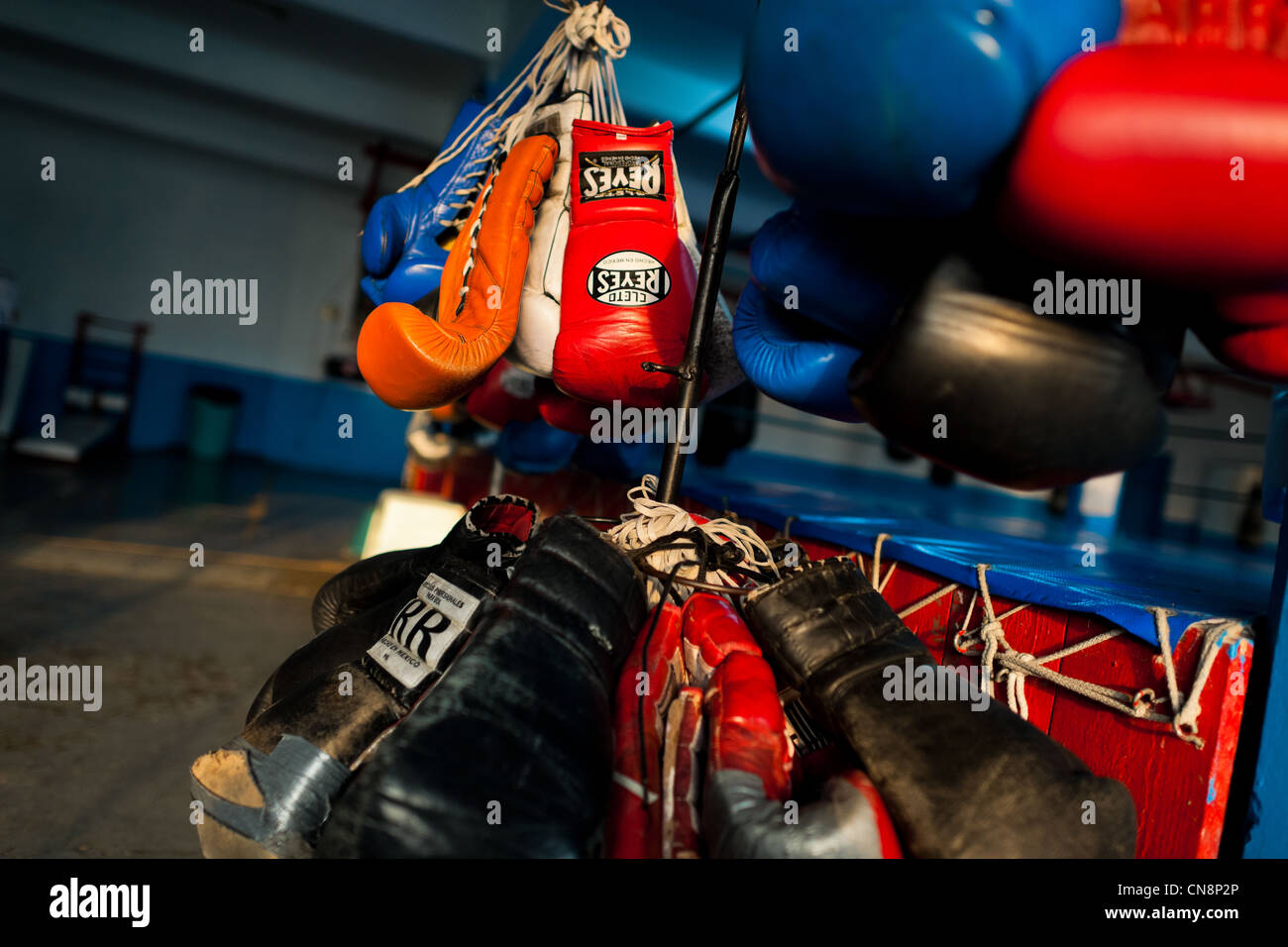 Colorful boxing gloves hung off a rack in the boxing gym in Mexico City, Mexico. - Stock Image