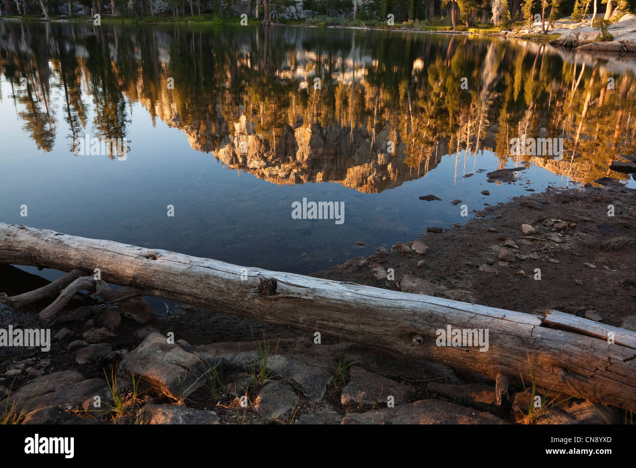Reflection in Gem Lake, Emigrant Wilderness Area, California, USA - Stock Image