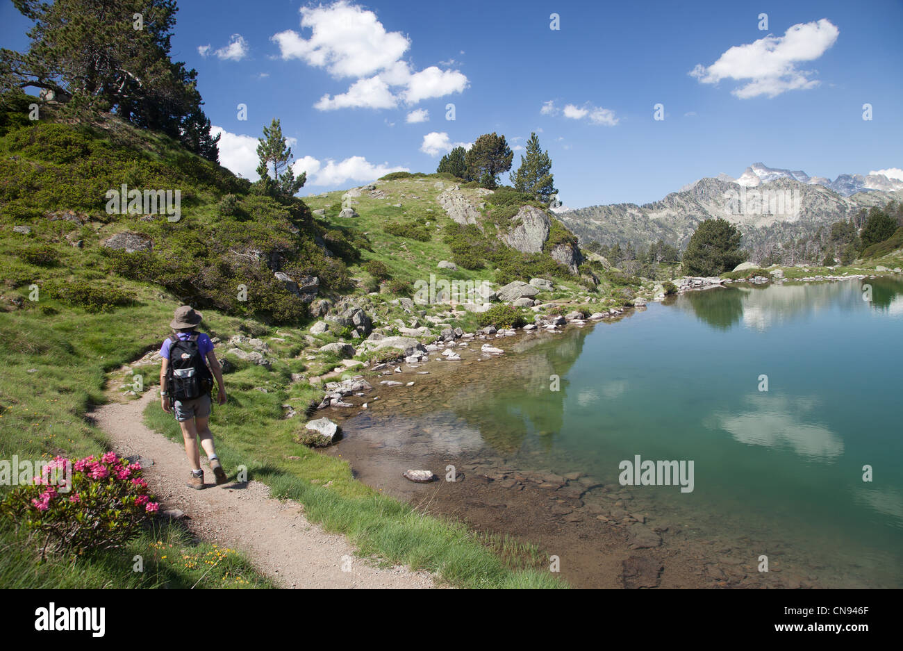 France, Hautes Pyrenees, Aragnouet, hiker near Bastan lake, Neouvielle park Stock Photo