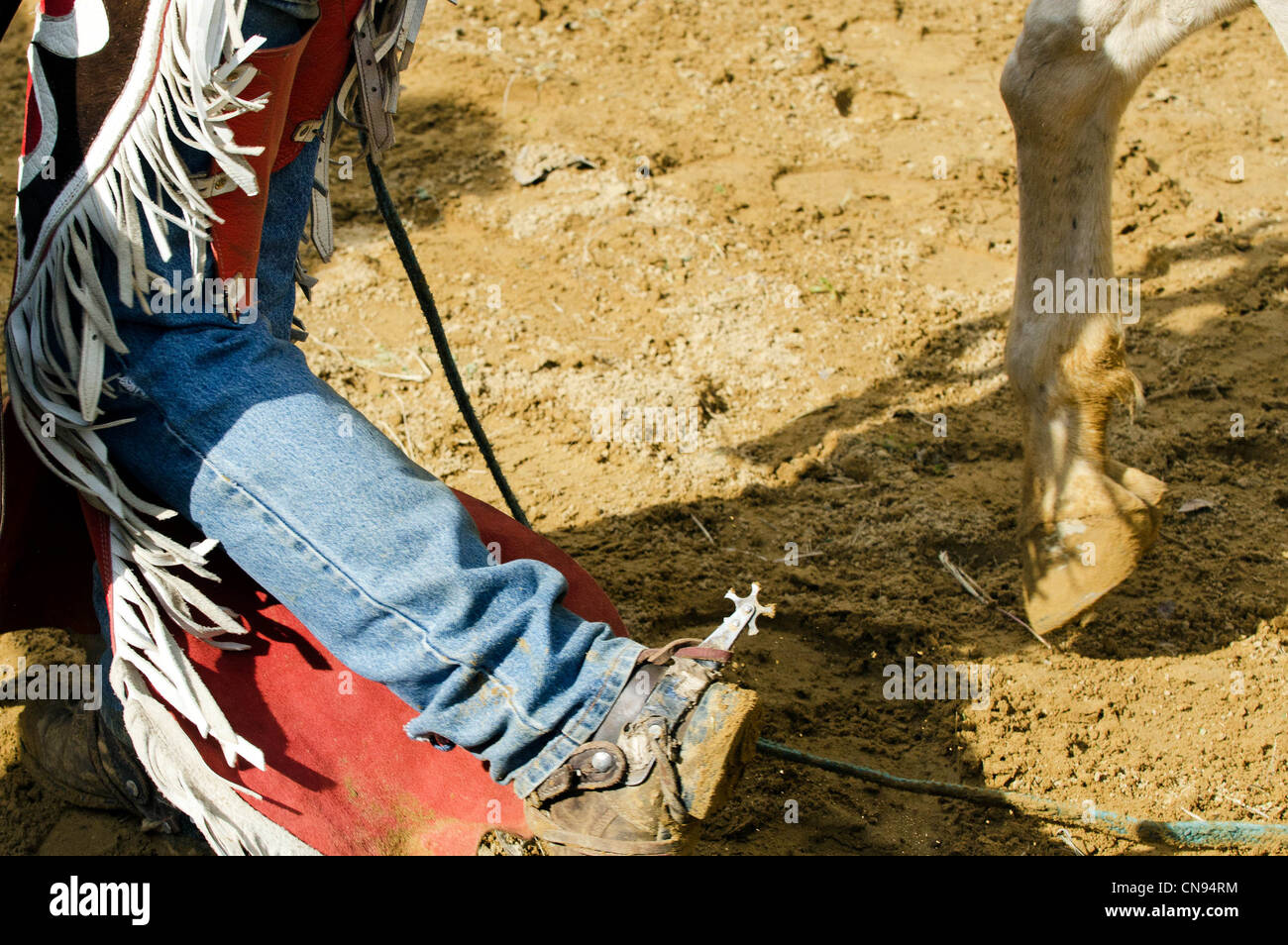 Livestock Show And Rodeo Stock Photos Amp Livestock Show And Rodeo Stock Images Alamy