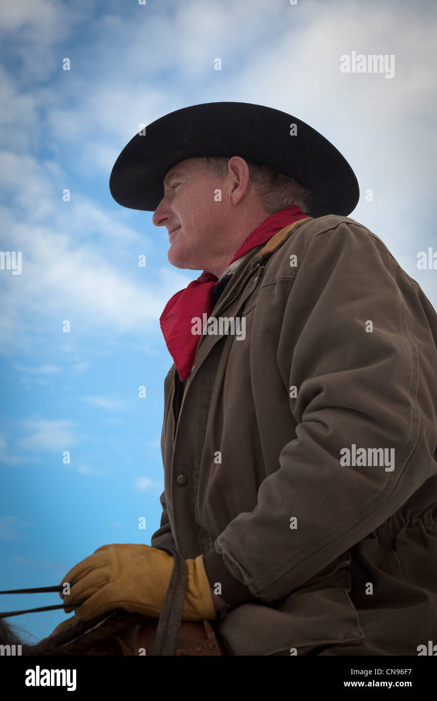 Cowboy in saddle with yellow leather gloves.  Captured on ranch in northeastern Wyoming. Stock Photo