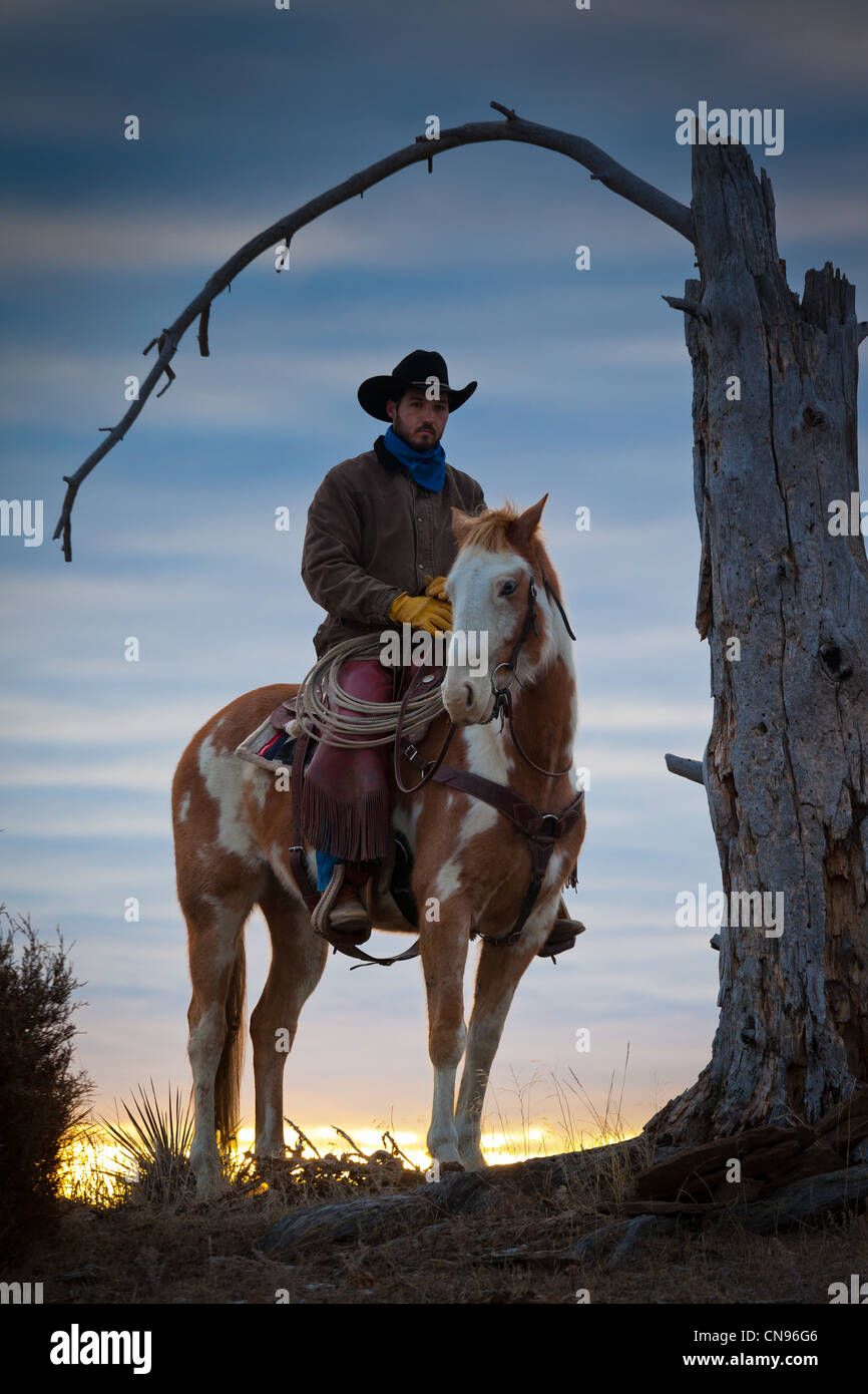 Cowboy and his horse at sunrise on a ranch in northeastern Wyoming - Stock Image