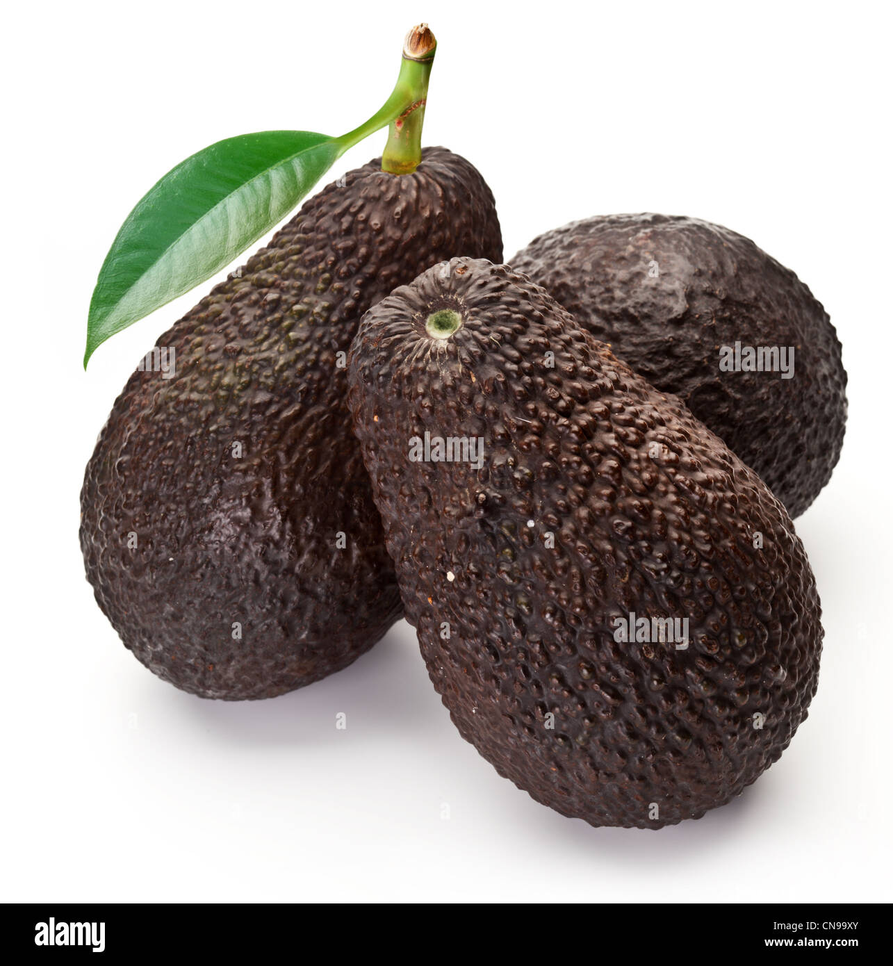 Avocados with leaves on a white background - Stock Image