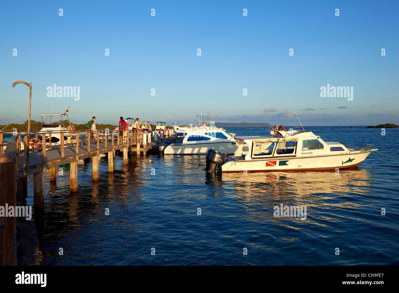Ecuador, Galapagos Islands, Isabela Island, Puerto Villamil - Stock Image