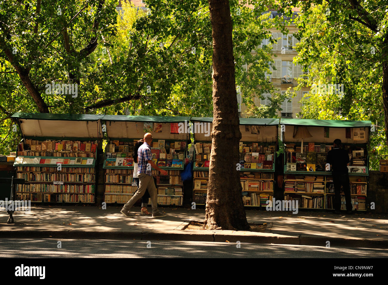 France, Paris, the Seine river banks listed as World Heritage by UNESCO, book sellers - Stock Image