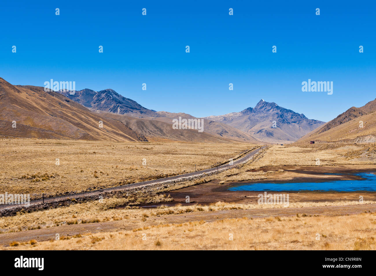 Peru, Puno province, landscape of the Altiplano, rail line linking Cuzco to Puno - Stock Image