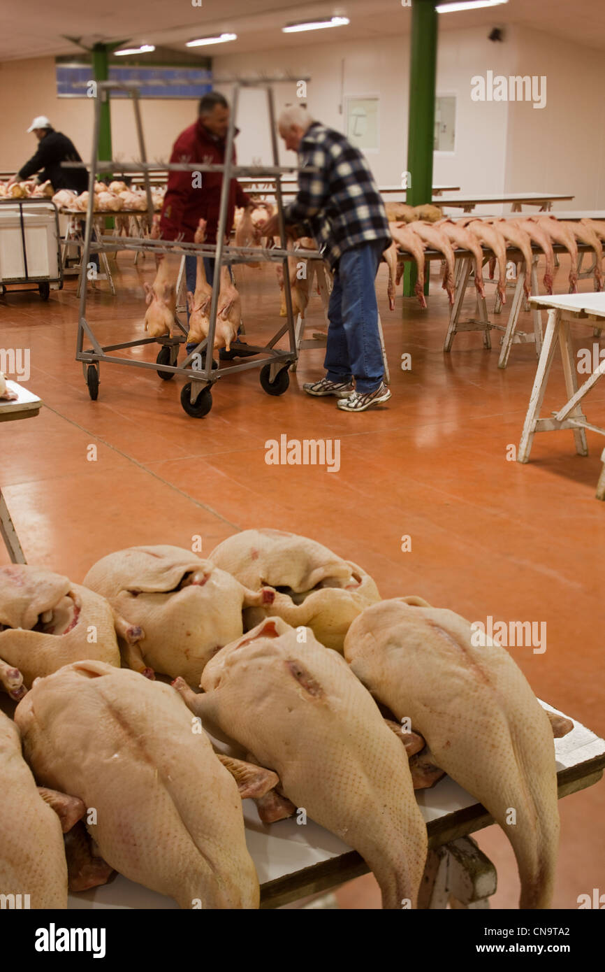 France, Gers, Samatan, the market in fatty - Stock Image
