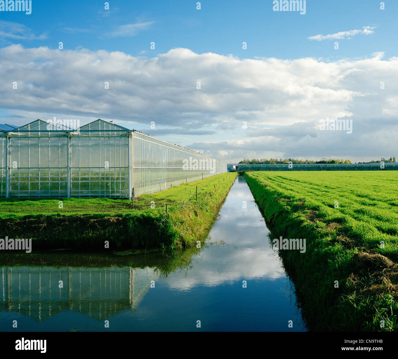 Greenhouses and irrigated river in field - Stock Image