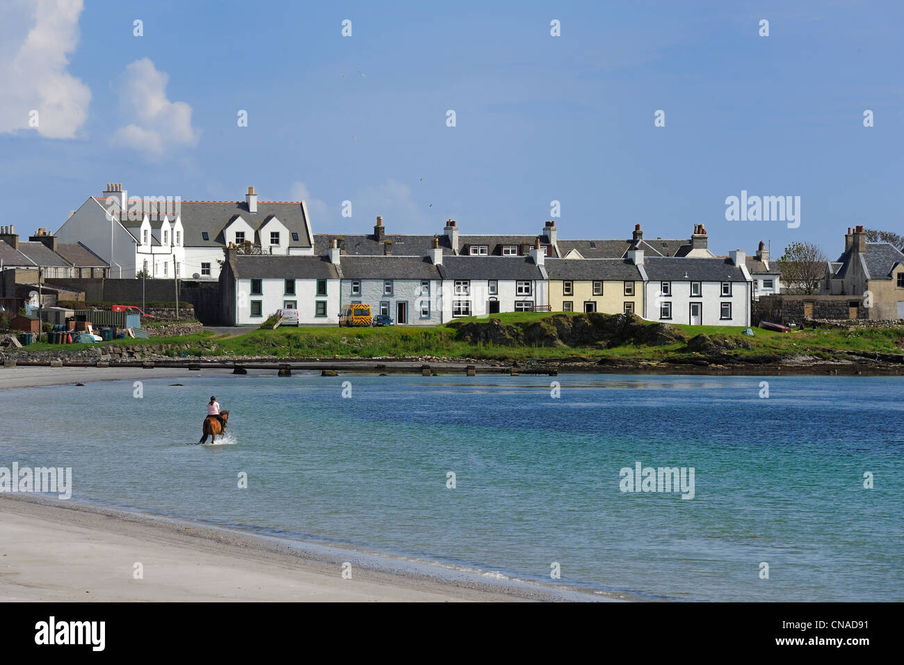 United Kingdom, Scotland, Inner Hebrides, Islay Island, horse riding at Port Ellen - Stock Image