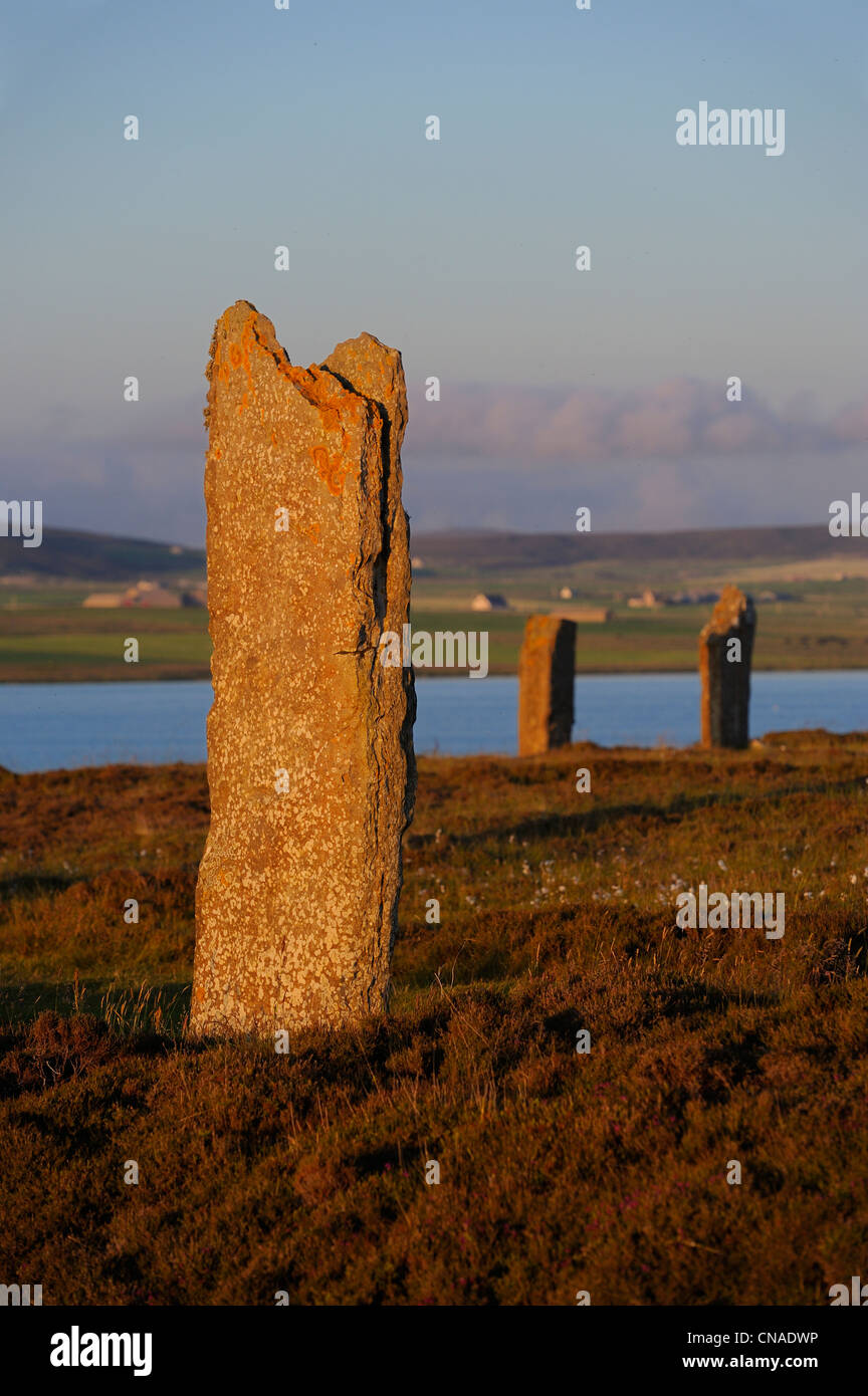 United Kingdom, Scotland, Orkney Islands, Mainland Island, beside the Loch of Stenness, standing stones (stone circle) Stock Photo