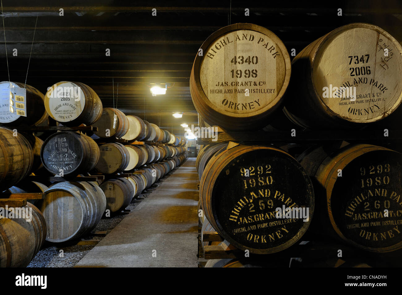 United Kingdom, Scotland, Orkney Islands, Kirkwall, Highland Park whisky distillery, storage of the barrels for - Stock Image