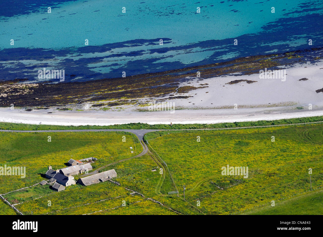 United Kingdom, Scotland, Orkney Islands, Papa Westray Island, farm by the sea and the beach (aerial view) - Stock Image