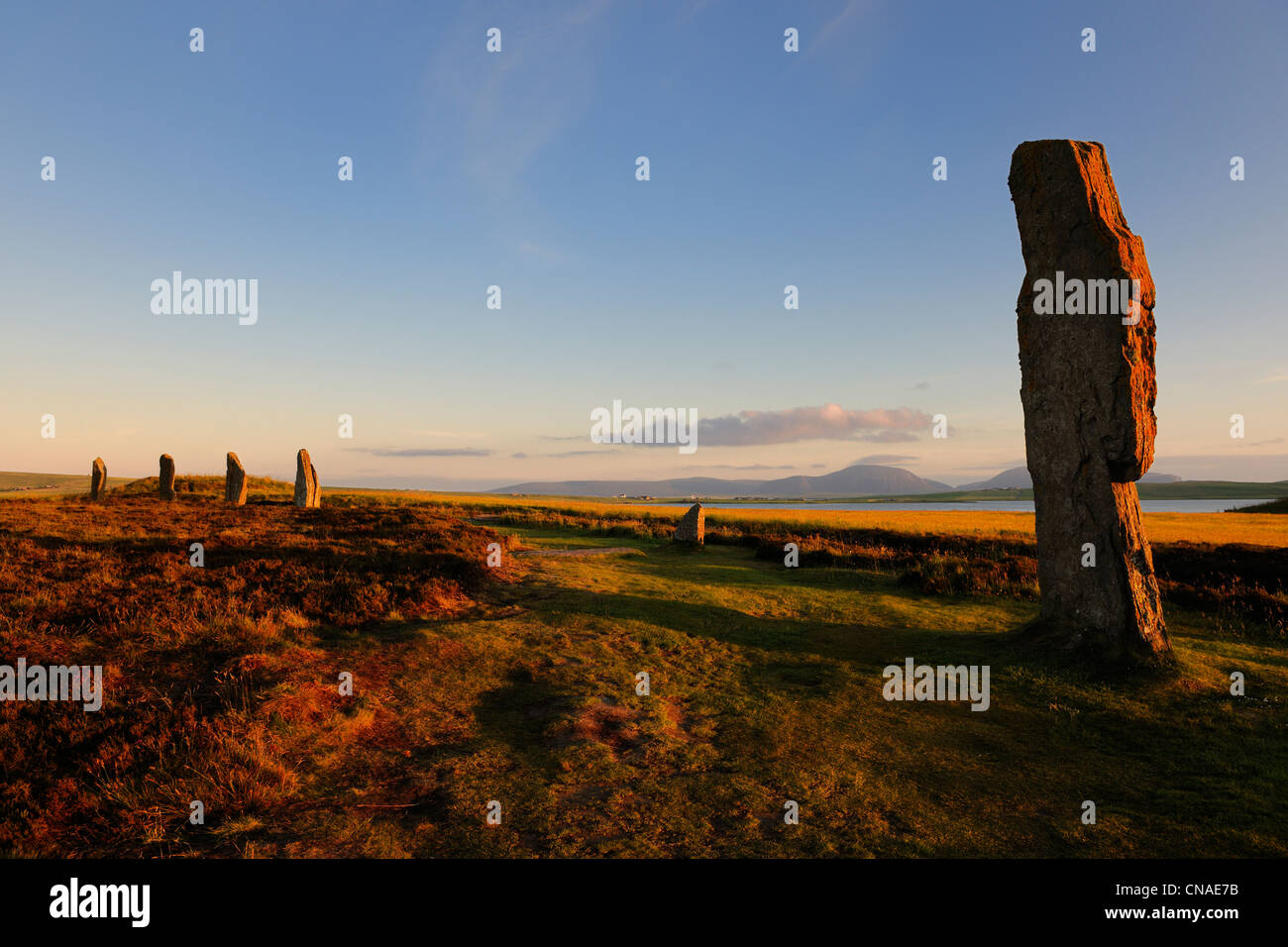 United Kingdom, Scotland, Orkney Islands, Mainland Island, beside the Loch of Stenness, standing stones (stone circle) - Stock Image